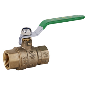 "1/2"" FPT Lead-Free Brass Ball Valve 600 PSI"